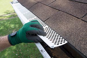 Runoff Tip Two  Install gutter guards.